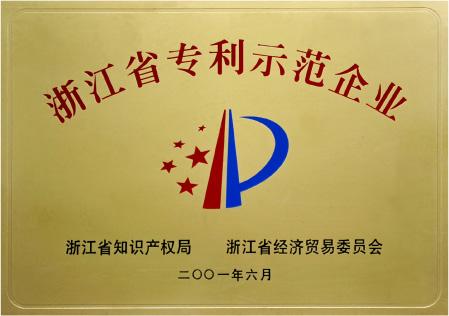 """2001年6月获""""浙江省专利示范企业""""称号"""